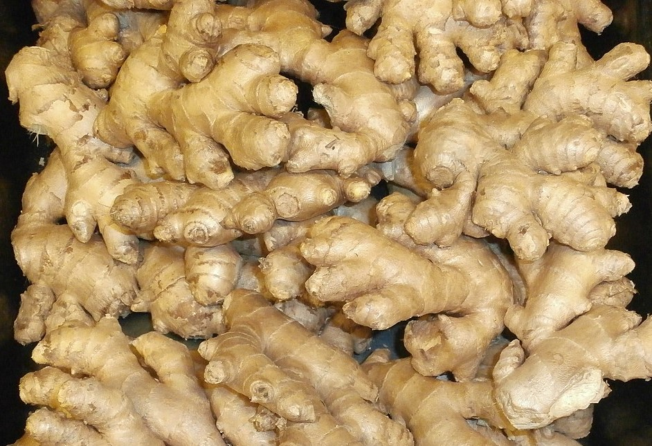 Oil profiles: Ginger