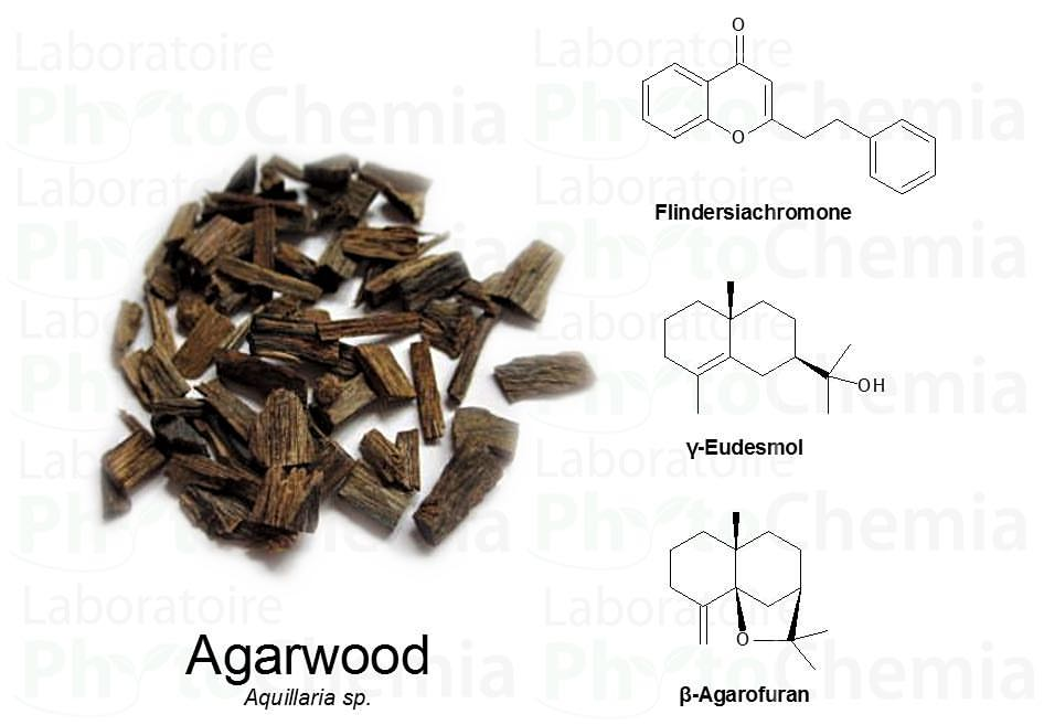 Agarwood Oil: a Few Characteristic Compounds