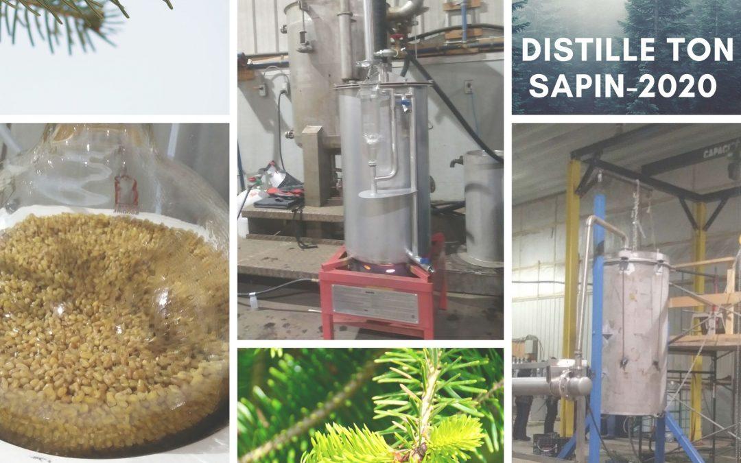 Distille ton Sapin 2020 ! La suite : Votre rapport d'analyse
