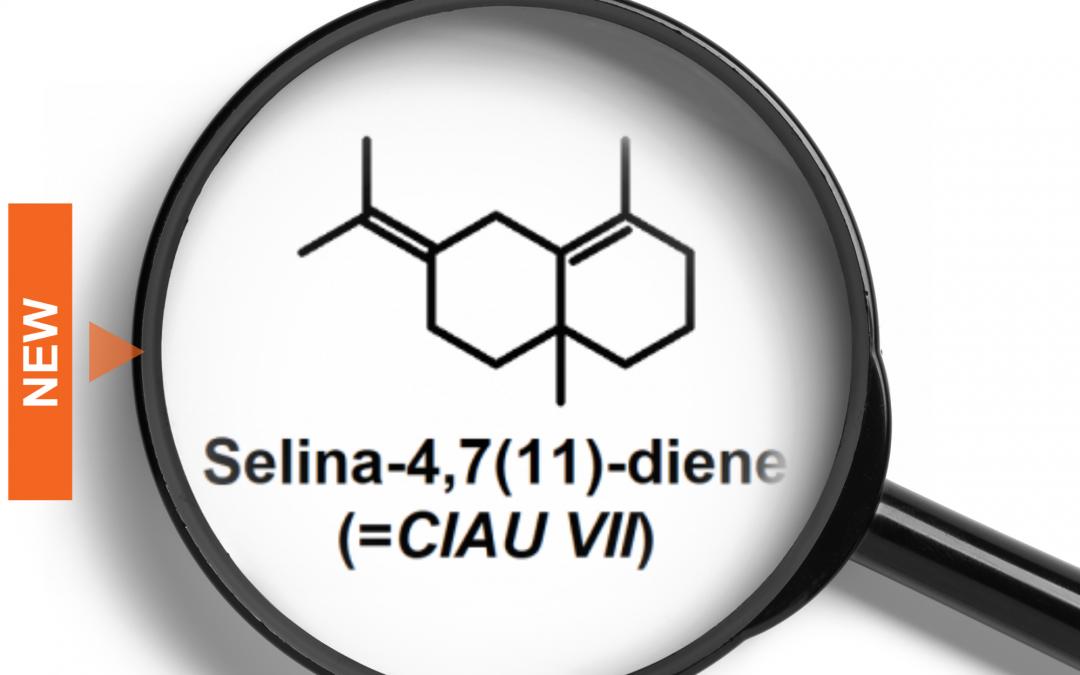 Le sélina-4,7(11)-diène dans le cannabis, ou comment identifier un inconnu